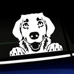Peeking Golden Retriever - Vinyl Decal
