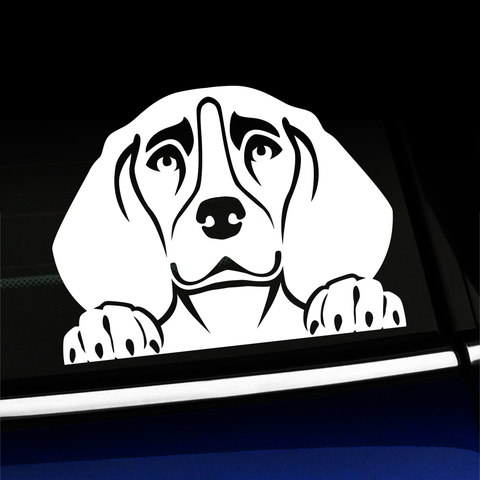 Peeking Beagle - Vinyl Decal Product Page