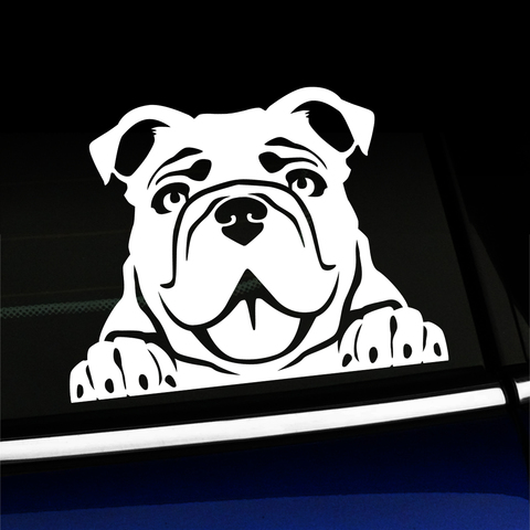 Peeking Bulldog - Vinyl Decal Product Page