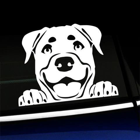 Peeking Rottweiler - Vinyl Decal Product Page