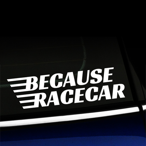 Because Racecar - Vinyl Decal