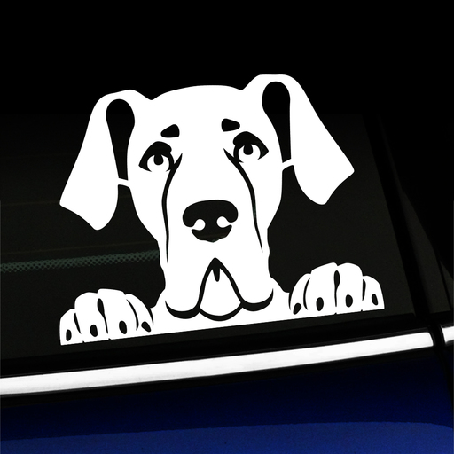 Peeking Great Dane Vinyl Decal