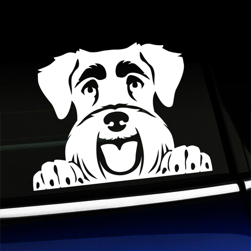 Peeking Schnauzer Vinyl Decal